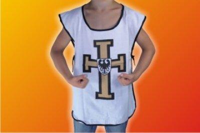 Tunic Templar!