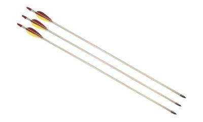 Sports Arrow /<br> Arrow 80 cm long<br>steel tip!