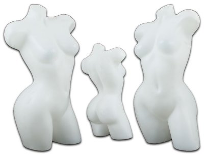 Torso bust doll lady mannequin Body NEW