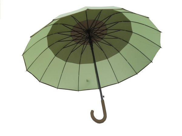 STYLISH UMBRELLA<br>with a bent HANDLE