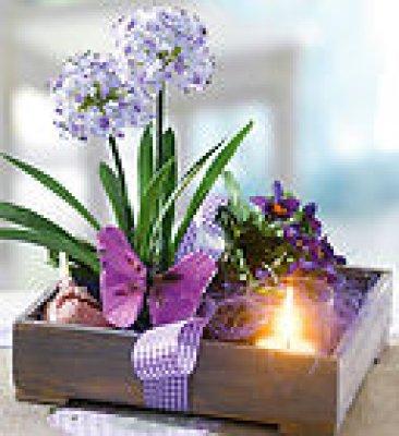 Kunstblumen Arrangement Allium (Frühling)