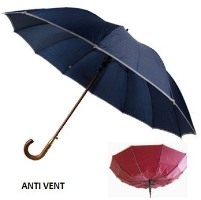 Umbrella Anti-storm
