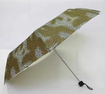 Fancy umbrella economic