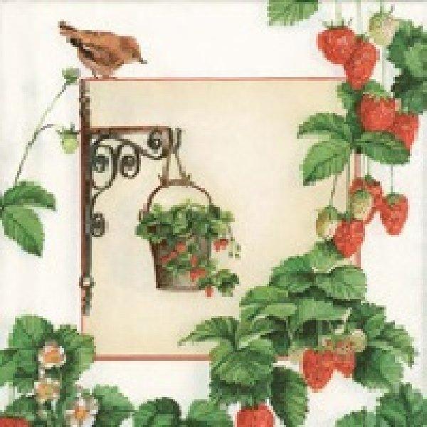 Serviette Hanging<br>Fruit 33x 33cm