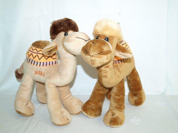 Pluche kameel
