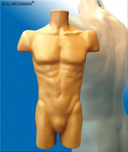 Mannequin Male Torso New