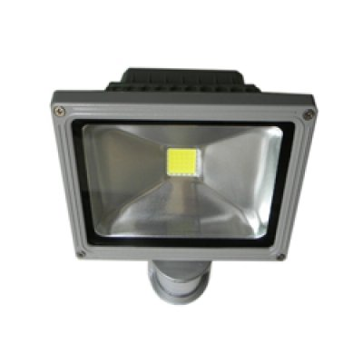 Floodlights with<br> Motion 50W warm<br>white silver