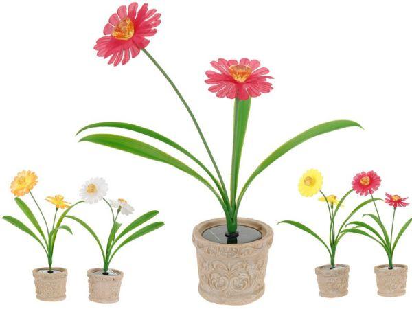 2 Solar Blumen im<br>Topf (4 Modelle)