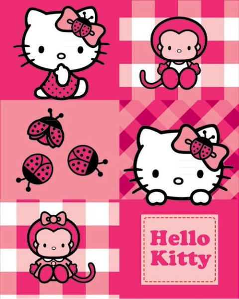 Hallo Kitty<br> Fleece-Decke 120 *<br>150cm