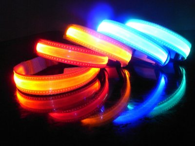 Hundehalsband LED<br>4 Farben