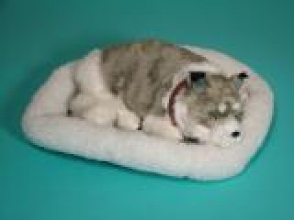 SLEEPTIX Husky in basket